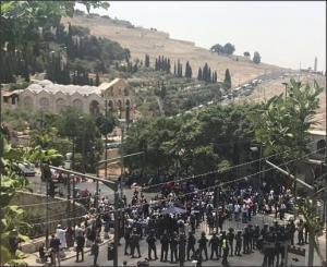 بالفيديو والصور.. مواجهات عنيفة تندلع في محيط الأقصى قبيل صلاة الجمعة