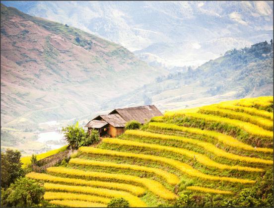 بالصور .. سابا مدينة الطبيعة الخلابة والهدوء في فيتنام