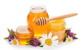 فوائد عسل القطن
