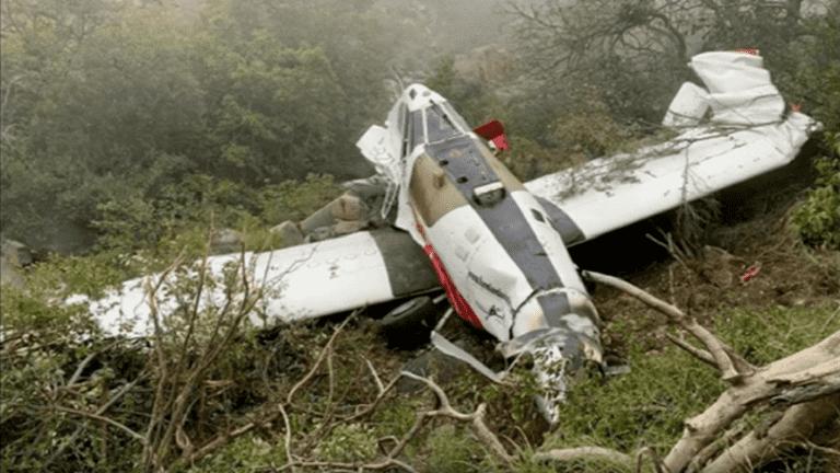 بالفيديو ..  طيار ينجو بأعجوبة بعد أن هبط فوق أشجار غابات اثر توقف محرك الطائرة بشكل مفاجئ
