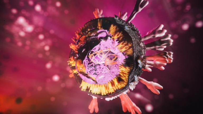 العلماء يكشفون عن تفصيل أساسي حول فيروس كورونا!