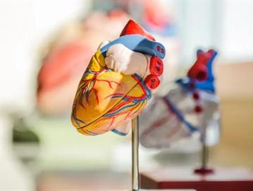 5 علاجات طبيعية لخفض ضغط الدم