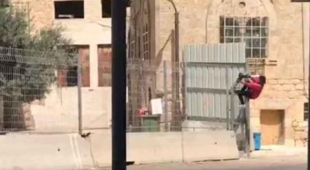 بالفيديو  ..  طفلة تتسلق جدار اًً للاحتلال للوصول لمنزلها في الخليل