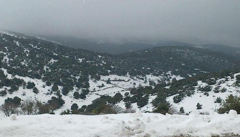 """الأرصاد: الثلوج ستكون فوق 800 متر """"الأربعاء"""""""