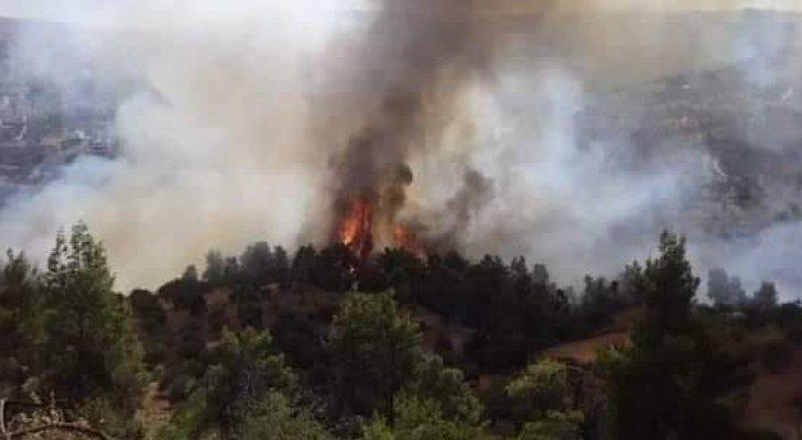 """التحقيقات الأولية: """"إهمال أحد المزارعين"""" سبب حريق عجلون"""