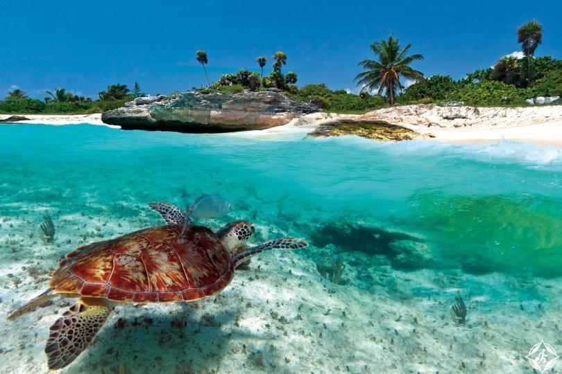 بالصور  ..  (9) أسباب لزيارة منطقة بحر الكاريبي في 2016