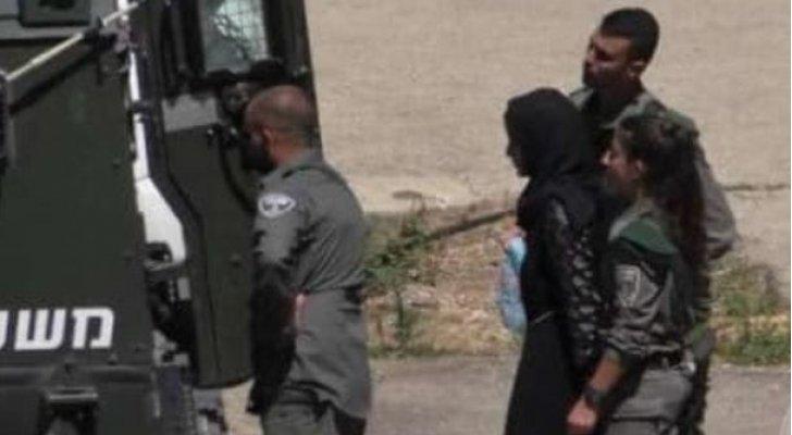 الاحتلال الإسرائيلي يعتقل فتاة وشابا من الخليل
