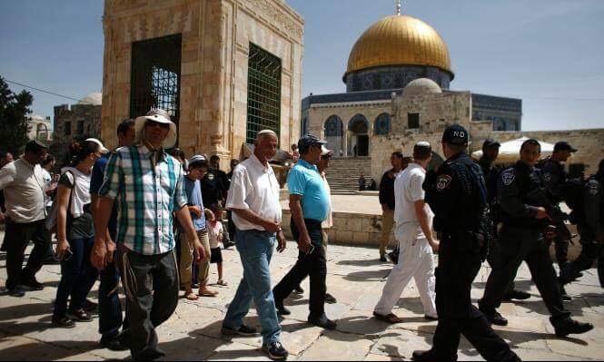 120 مستوطنا يقتحمون الأقصى وسط حراسة الاحتلال