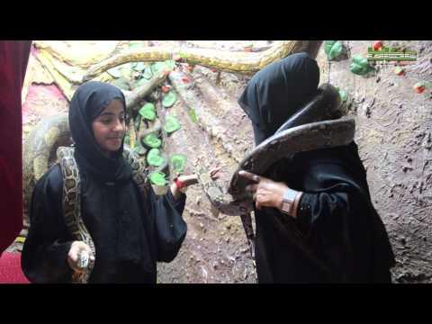 شاهد  ..  سعودية تقتات على الثعابين !
