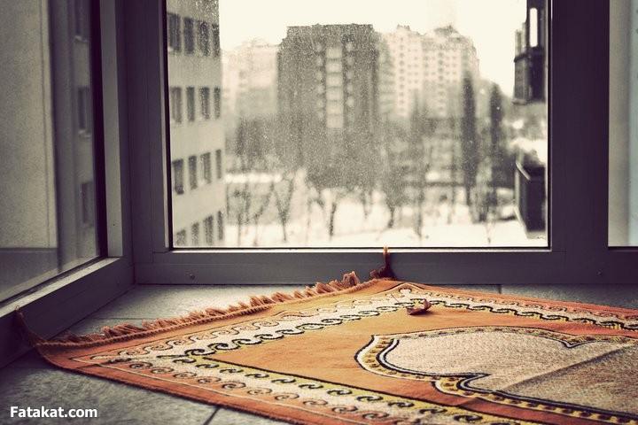 سجادة الصلاة تكشف سارق الـ 100 ألف ريال