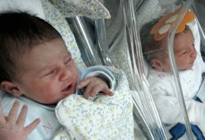 خلال فترة العدوان… غزة تُنجب 5300 مولود جديد وتودع 2140 شهيدا