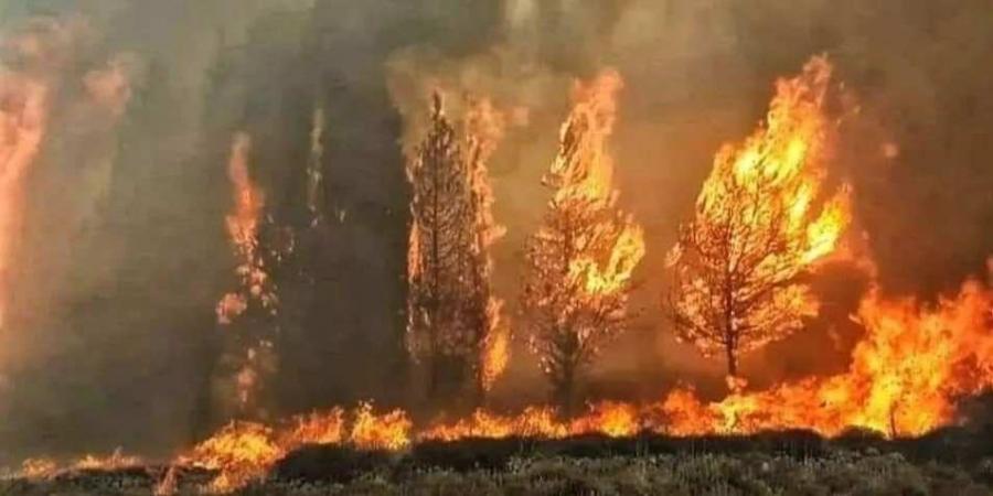 طائرتان أردنيتان للمساعدة باخماد الحرائق في لبنان