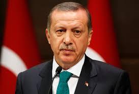"""أردوغان يدافع عن حق تركيا في """"حماية حدودها"""""""