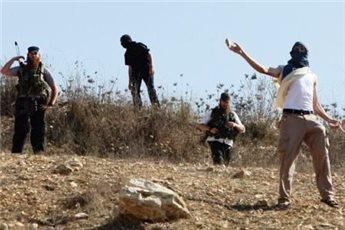 مستوطنون يعتدون على شبان في نابلس ورام الله