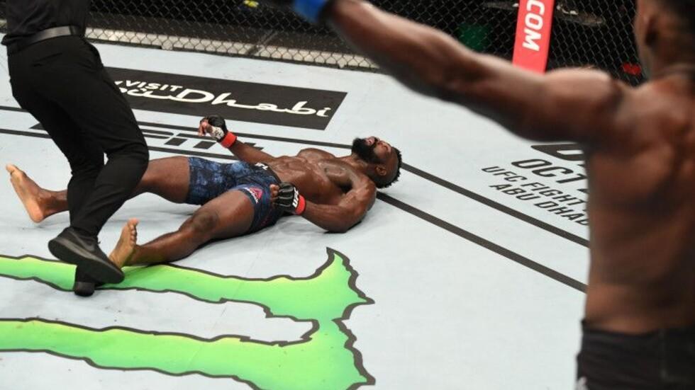 الضربة القاضية التي لا تصدق في تاريخ UFC - فيديو