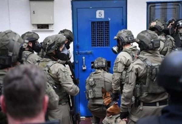 قوات الاحتلال تقتحم معتقل ريمون