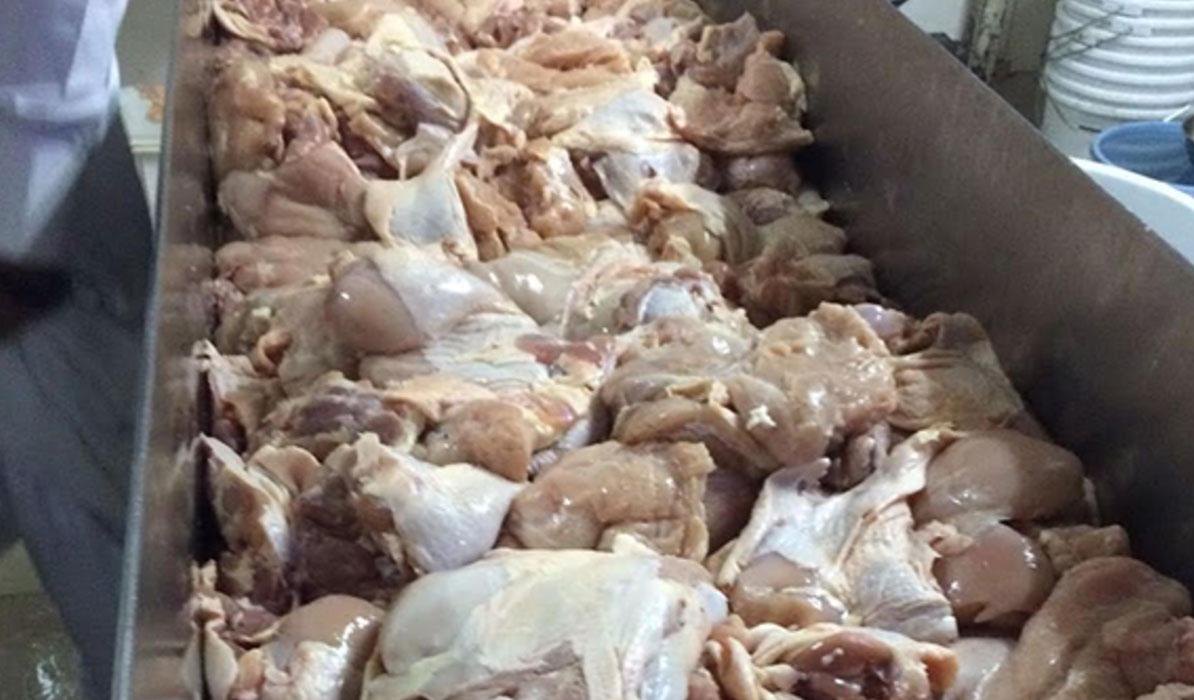 مدعي عام الزرقاء يوقف مستثمرا عراقيا على خلفية ضبط أطنان من الدجاج الفاسد