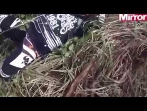 بالفيديو.. قائد دراجة نارية يسقط فوق جحر ثعابين سامة