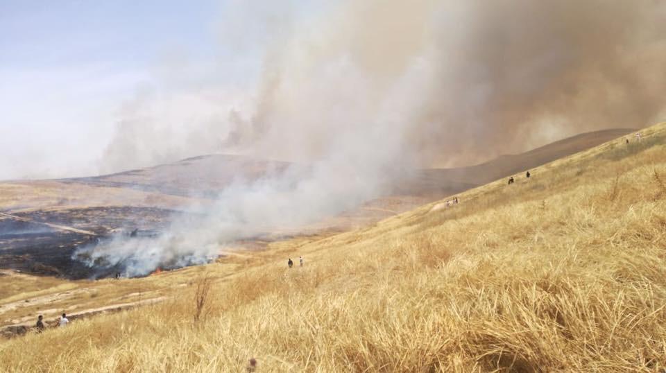افتعال حريق في الجولان من قبل الاحتلال