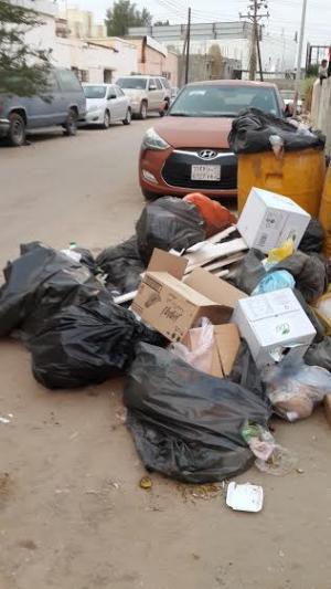 شاهد.. تراكم النفايات في أبو عريش.. والأهالي: الوضع لا يحتمل