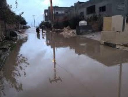 مياه الأمطار تداهم(8) منازل  بالشونه الشمالية نتيجة الأمطار الغزيرة