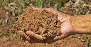 تعرف على فوائد تناول الطين
