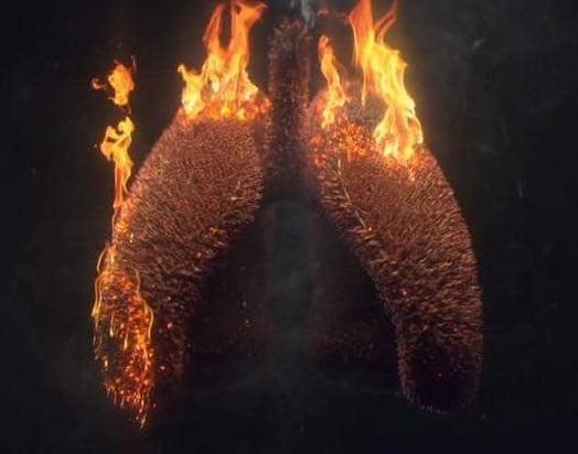 """اللبن الزبادي وسرطان الرئة ..  دراسة """"بالغة الأهمية"""" للمدخنين"""