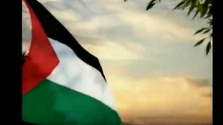 بالفيديو : يوم النكبة الفلسطينية