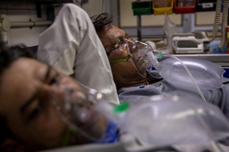 تسجيل 3 حالات للفطر الأسود بسلطنة عمان