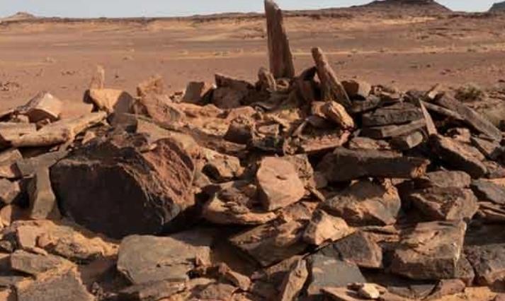 دُفن مع أصحابه قبل آلاف السنين ..  رفات كلب في السعودية تكشف عن نتائج صادمة