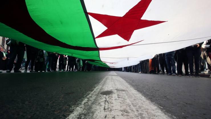"""""""تعني الاجرام وخادشه للحياء"""" .. أعداد كبيرة من الطلبات في الجزائر لتغيير ألقاب العائلات"""