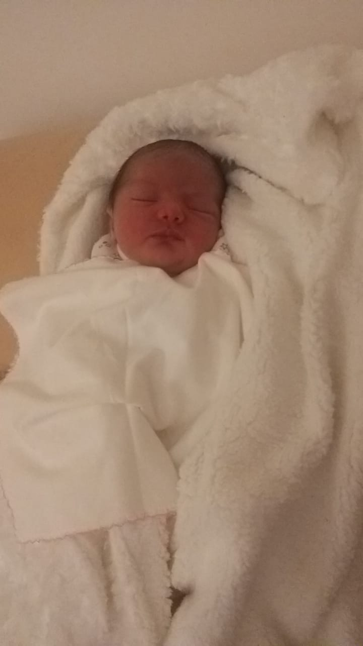 محمد ابو غلوس  .. مبارك المولودة