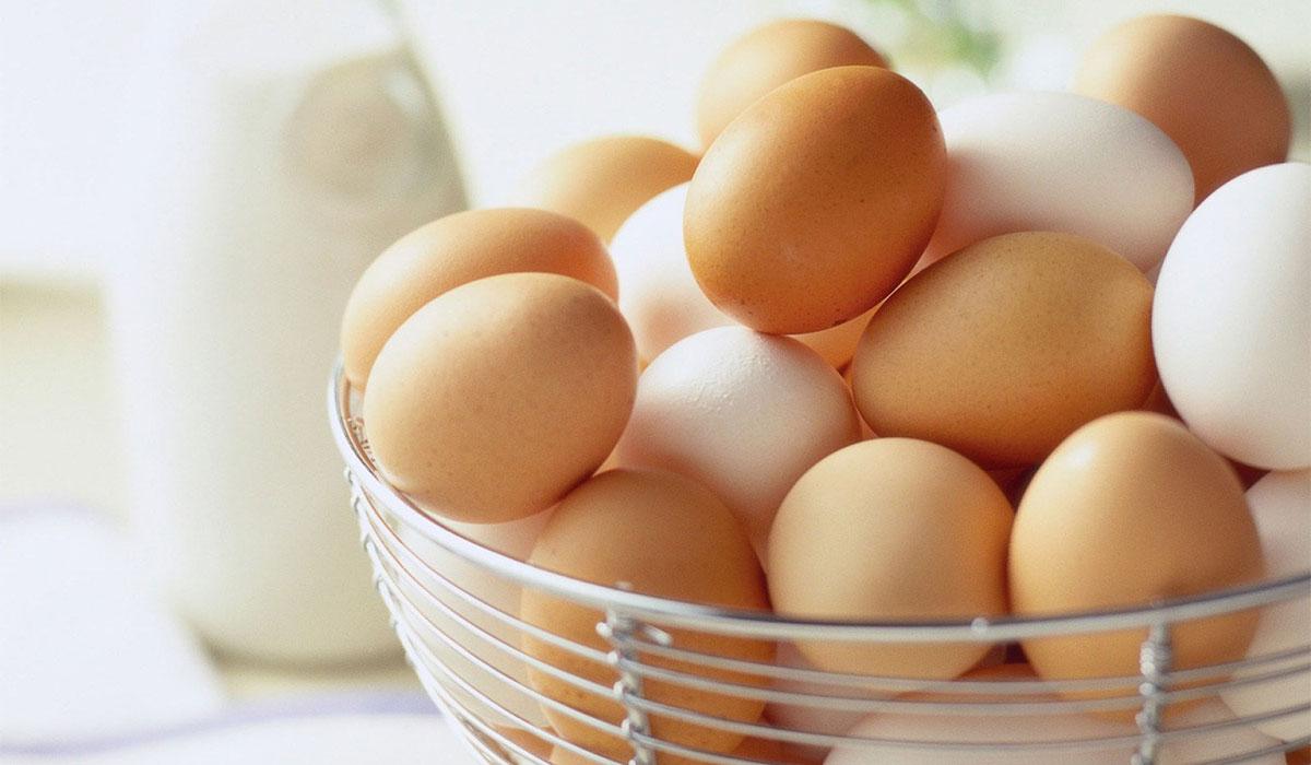 فوائد البيض لبناء العضلات ولإنقاص الوزن وللمرأة الحامل