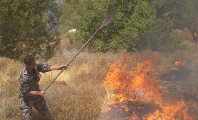 جرش : حريق ياتي على (4) دونمات بدبين