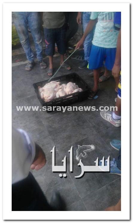 بالصور.. إتلاف 135 كيلو من الدجاج الفاسد في الشونه الشمالية