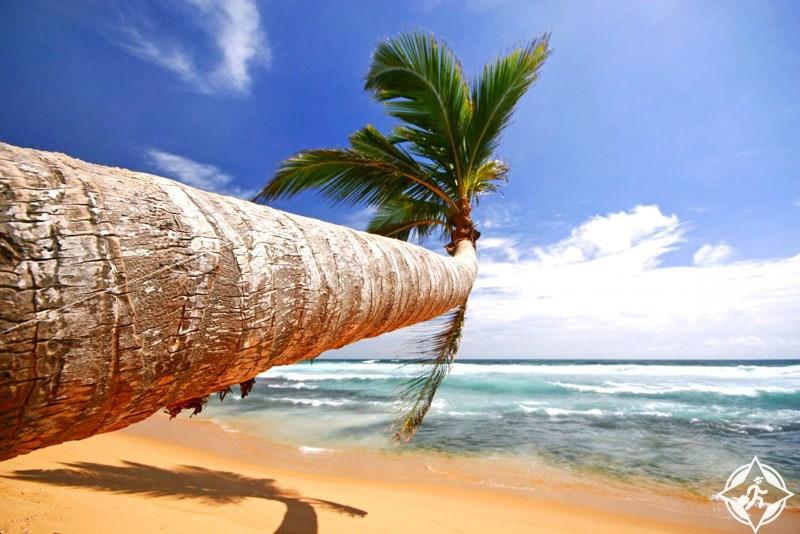 بالصور  .. تعرف على أفضل الأماكن السياحية في سريلانكا