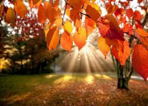 انتهاء فصل الصيف الثلاثاء وبدء الاعتدال الخريفي