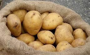 الزراعة تمنع دخول 100 طن من البطاطا لعدم مطابقتها المواصفات