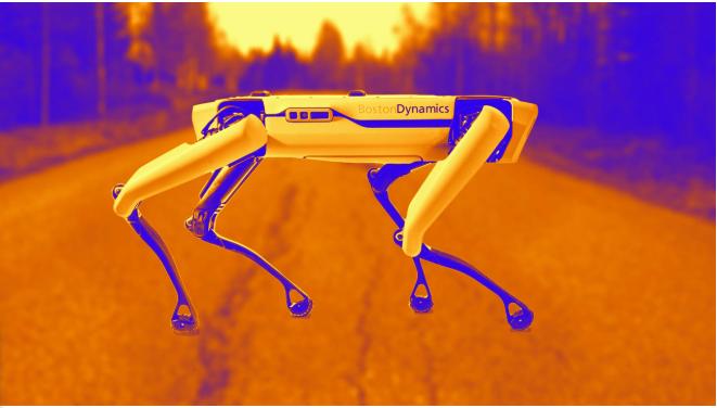"""بالفيديو: """"سبوت"""" ..  روبوت لرعي الأغنام في نيوزيلاندا"""
