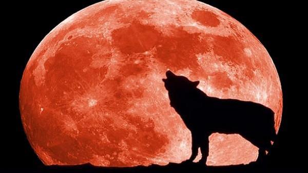 القمر يكتمل بدراً الاثنين النهار image.php?token=b351c915ac936e9d0f38270e8e635194&size=