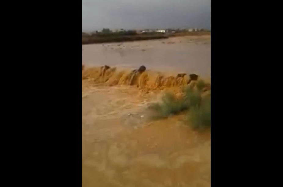 بالفيديو: تساقط غزير للامطار في البادية الشرقية بشهر حزيران
