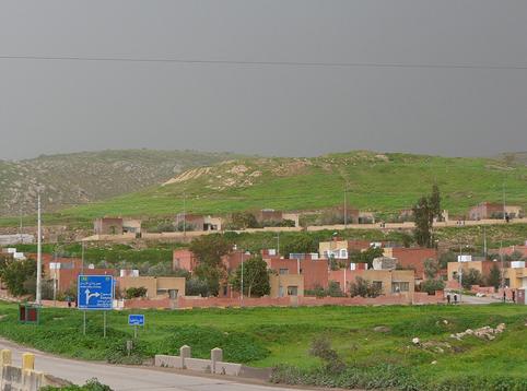 الأغوار الشمالية : الحر يلحق أضراراً بالمزروعات والمزارعون يطالبون بزيادة مياه الري