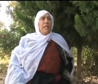 بالفيديو .. حجة فلسطينية بعد حكم ابنها 99 سنة