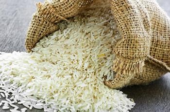عمّان : حشرات وقوارض حية وميتة في 200 طن من الأرز