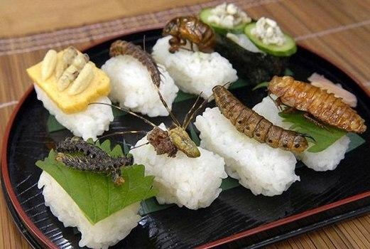 دراسة: تناول الحشرات يقي من السرطان