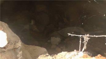 الاحتلال ينبش قبرا في بيت امر يعود لـ 150 عاما