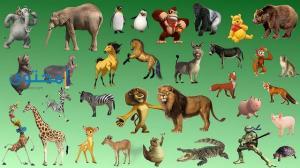ماهو تفسير حلم رؤية الحيوانات في المنام ؟