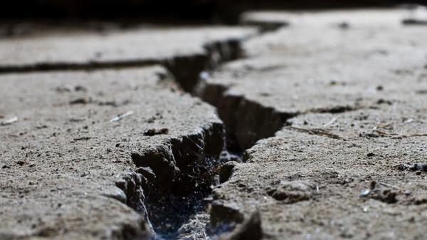 """فلسطين تتعرض لزلازل يومية ..  وقد نشهد """"تسونامي"""" جديداً"""