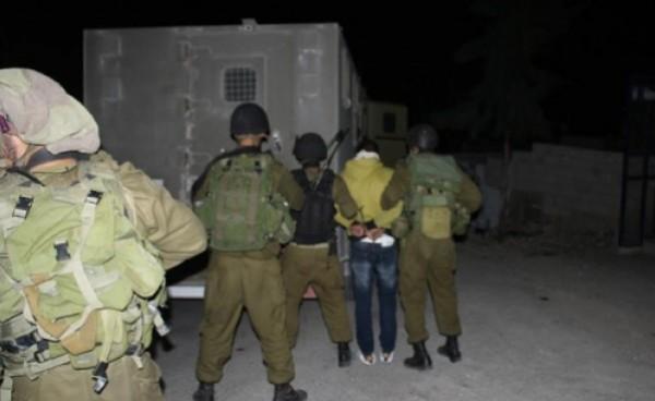قوات الاحتلال تعتقل 11 فلسطينياً في الضفة الغربية
