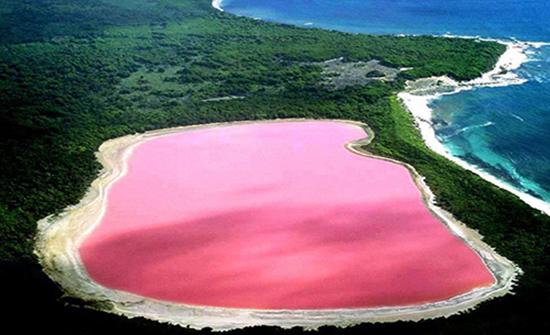 """فيديو : البحيرة الوردية """"هيلير"""" في غرب استراليا"""